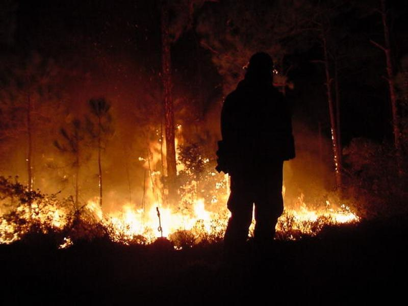Firefighter watching for embers, National Park Service image