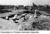 Muqdam Excavations